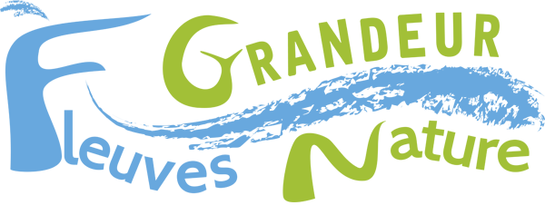 Logo FGN2 Fleuve bleu